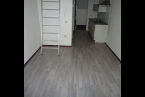 Bekijk studio te huur in Tilburg Wittebollestraat: Studio appartement - € 675, 28m2 - 324195