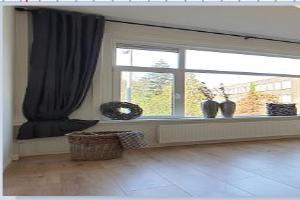 Bekijk appartement te huur in Rotterdam B. Jungeriusstraat, € 850, 45m2 - 364632. Geïnteresseerd? Bekijk dan deze appartement en laat een bericht achter!