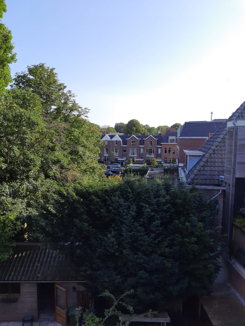 For rent: Apartment Hazepaterslaan, Haarlem - 6