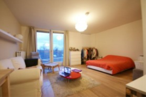 View apartment for rent in Breda Wilhelminastraat, € 720, 40m2 - 378749. Interested? check out this apartment and leave a message!