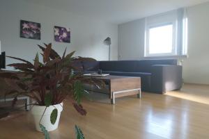 Bekijk appartement te huur in Den Bosch Oude Vlijmenseweg, € 1195, 67m2 - 379384. Geïnteresseerd? Bekijk dan deze appartement en laat een bericht achter!