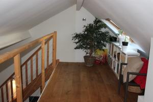 Bekijk appartement te huur in Maastricht Alexander Battalaan, € 1010, 50m2 - 363246. Geïnteresseerd? Bekijk dan deze appartement en laat een bericht achter!