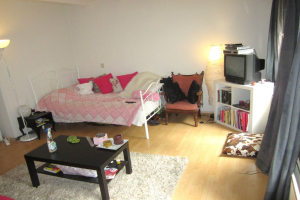 View room for rent in Arnhem Parkstraat, € 495, 20m2 - 374286. Interested? check out this room and leave a message!