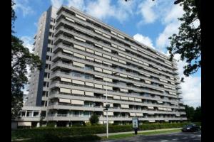 Bekijk appartement te huur in Eindhoven Herman Gorterlaan: Appartement - € 550, 50m2 - 315078