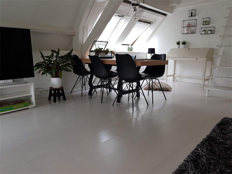 For rent: Apartment Donkere Spaarne, Haarlem - 3