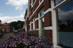 Bekijk kamer te huur in Enschede Het Sander, € 415, 16m2 - 312680. Geïnteresseerd? Bekijk dan deze kamer en laat een bericht achter!