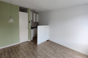 View apartment for rent in Utrecht C. van Maasdijkstraat, € 1350, 58m2 - 373858. Interested? check out this apartment and leave a message!