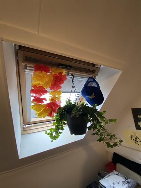 Te huur: Kamer Haaksbergerstraat, Enschede - 4