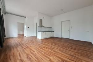 For rent: Apartment Diepenveenseweg, Deventer - 1