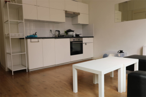 View apartment for rent in Groningen Hofstraat, € 1000, 36m2 - 399817. Interested? check out this apartment and leave a message!