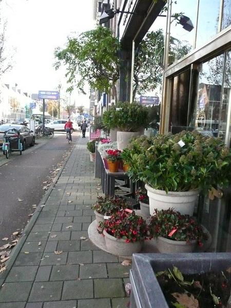 For rent: House Duvenvoordestraat, Haarlem - 11