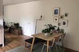 For rent: Apartment Elisabeth Gasthuishof, Leiden - 1