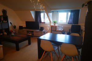 For rent: Apartment Hoge Rijndijk, Leiden - 1