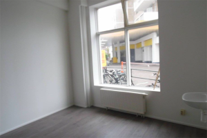 View room for rent in Den Haag Harstenhoekweg, € 425, 13m2 - 384442. Interested? check out this room and leave a message!