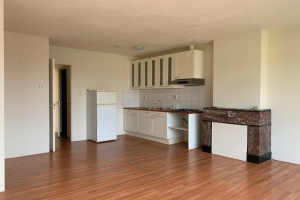 View apartment for rent in Rotterdam Bas Jungeriusstraat, € 769, 52m2 - 372900. Interested? check out this apartment and leave a message!