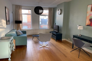 For rent: Apartment Van Loostraat, Den Haag - 1