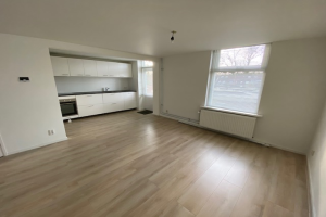 View apartment for rent in Huis Ter Heide Ut Prins Alexanderweg, € 1250, 90m2 - 382750. Interested? check out this apartment and leave a message!