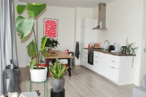 Bekijk appartement te huur in Den Haag Schoolstraat, € 1545, 102m2 - 374452. Geïnteresseerd? Bekijk dan deze appartement en laat een bericht achter!