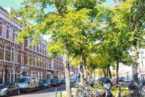 Bekijk appartement te huur in Den Haag Regentesselaan, € 1225, 55m2 - 387423. Geïnteresseerd? Bekijk dan deze appartement en laat een bericht achter!