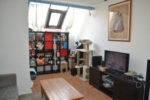 Bekijk kamer te huur in Groningen Tuinbouwdwarsstraat, € 395, 32m2 - 294925. Geïnteresseerd? Bekijk dan deze kamer en laat een bericht achter!