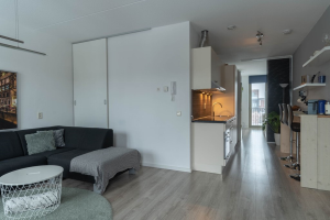 View apartment for rent in Almere Scandinaviekade, € 1200, 50m2 - 368599. Interested? check out this apartment and leave a message!