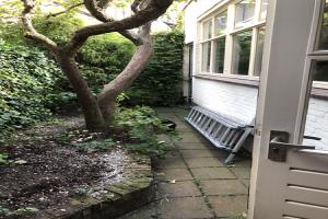 For rent: House Molstraat, Bergen Op Zoom - 1