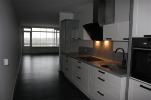 For rent: Apartment Geessinkweg, Enschede - 1
