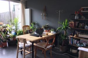 Bekijk kamer te huur in Amsterdam Adriaan Loosjesstraat, € 700, 17m2 - 394230. Geïnteresseerd? Bekijk dan deze kamer en laat een bericht achter!