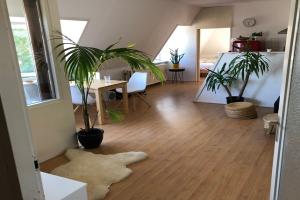 Bekijk appartement te huur in Utrecht M.A. de Ruyterstraat, € 1050, 55m2 - 227242. Geïnteresseerd? Bekijk dan deze appartement en laat een bericht achter!