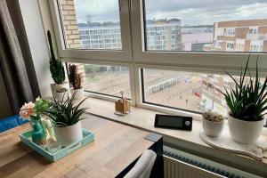Te huur: Appartement Gevers Deynootweg, Den Haag - 1