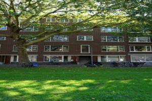 Bekijk appartement te huur in Rotterdam Mijnsherenlaan, € 1100, 85m2 - 351150. Geïnteresseerd? Bekijk dan deze appartement en laat een bericht achter!