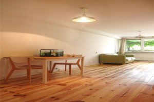 Bekijk appartement te huur in Oud Zuilen Laan van Zuilenveld, € 1500, 120m2 - 394006. Geïnteresseerd? Bekijk dan deze appartement en laat een bericht achter!