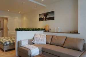 View apartment for rent in Schiedam Boerhaavelaan, € 1050, 40m2 - 372260. Interested? check out this apartment and leave a message!