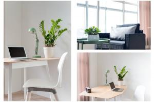 Bekijk kamer te huur in Den Haag Esperantoplein, € 605, 30m2 - 297295. Geïnteresseerd? Bekijk dan deze kamer en laat een bericht achter!
