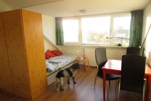 Bekijk kamer te huur in Rheden Olivier van Noortstraat, € 425, 27m2 - 321544. Geïnteresseerd? Bekijk dan deze kamer en laat een bericht achter!