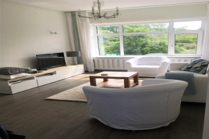 View apartment for rent in Den Haag Tholensestraat, € 1450, 68m2 - 372396. Interested? check out this apartment and leave a message!