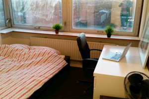 For rent: Room Aan 't Verlaat, Delft - 1