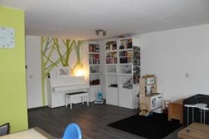 Bekijk appartement te huur in Maastricht Volksplein: Appartement - € 925, 80m2 - 299447