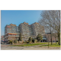 Bekijk appartement te huur in Rotterdam Zuiderterras: Hoekappartement  - € 1050, 62m2 - 299439