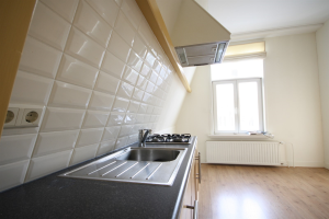 Te huur: Appartement Hoge Rijndijk, Leiden - 1