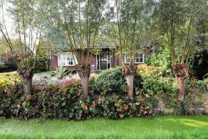 Bekijk woning te huur in Honselersdijk Zwethlaan, € 2495, 168m2 - 360580. Geïnteresseerd? Bekijk dan deze woning en laat een bericht achter!