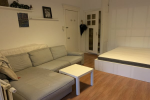 View room for rent in Maastricht Wilhelminasingel, € 575, 31m2 - 383335. Interested? check out this room and leave a message!