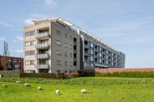 For rent: Apartment Optimiststraat, Rotterdam - 1