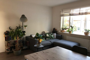 View apartment for rent in Utrecht Pieter Nieuwlandstraat, € 865, 43m2 - 374364. Interested? check out this apartment and leave a message!
