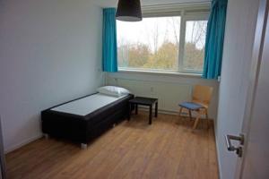 Bekijk kamer te huur in Amersfoort Trekvogelweg, € 435, 10m2 - 354313. Geïnteresseerd? Bekijk dan deze kamer en laat een bericht achter!
