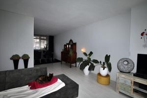 Te huur: Appartement Hofstedestraat, Meppel - 1