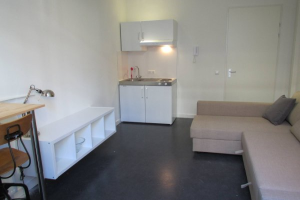 View studio for rent in Utrecht Brigittenstraat, € 945, 23m2 - 368716. Interested? check out this studio and leave a message!
