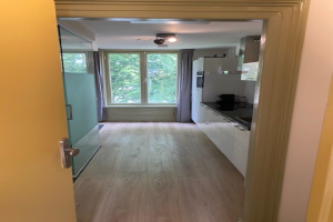 View apartment for rent in Arnhem Betuwestraat, € 1395, 50m2 - 395683. Interested? check out this apartment and leave a message!