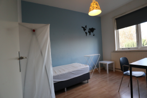 Bekijk kamer te huur in Eindhoven Orchideeenstraat, € 400, 12m2 - 379031. Geïnteresseerd? Bekijk dan deze kamer en laat een bericht achter!