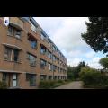 Te huur: Kamer Vaartdreef, Zoetermeer - 1